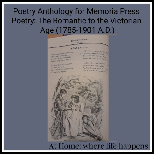 Poetry anthology for Memoria Press Poetry Set