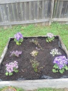 GWC flower garden