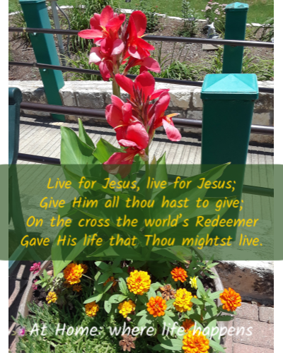 Live For Jesus