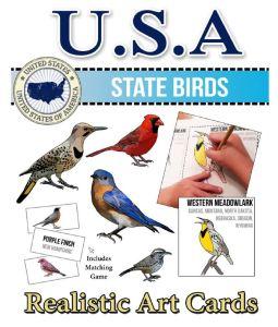 50 state birds