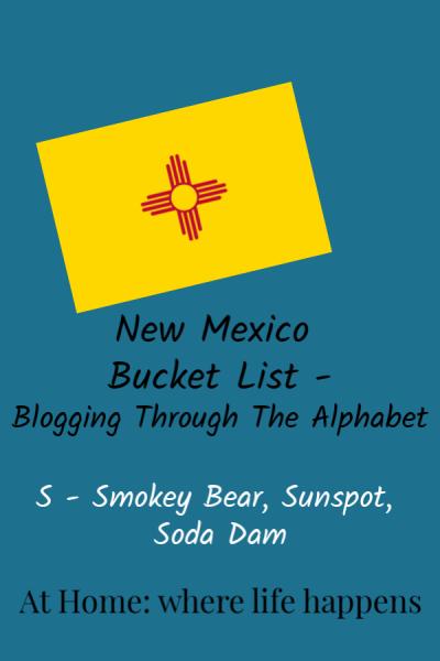 Blogging Through The Alphabet S vertical image
