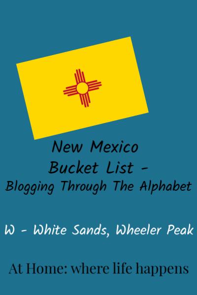 Blogging Through The Alphabet W vertical image