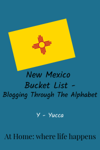 Blogging Through The Alphabet Y vertical image
