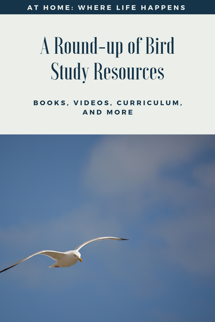A Round-up of Bird Study Resources