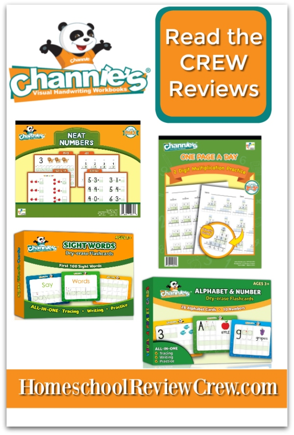 Channies-Dry-Erase-and-one-page-a-day-Reviews-2019