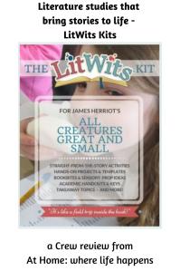 LitWits Kits