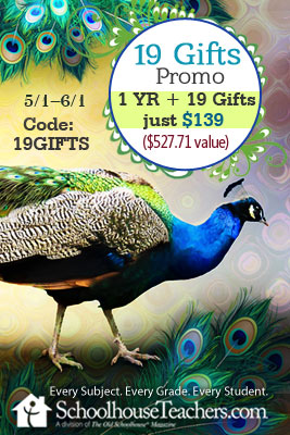 ST-2020-May-19-Gifts-Sale-theme-2-ban-240x400-1