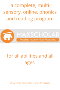 MaxScholar program